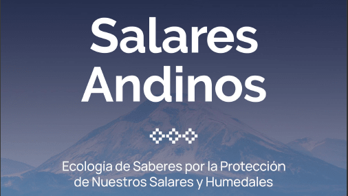 Libro-salares andinos